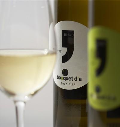 vins1