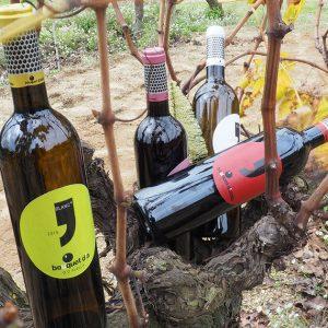 Vins-Ecològics-Bouquet-Alella